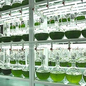 LZM X-tra-lab-004